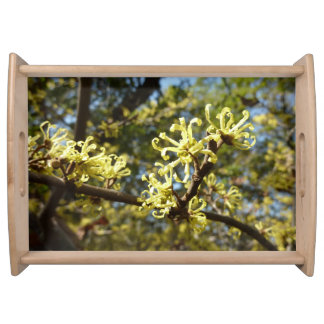 Witch Hazel Flowers Serving Tray