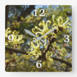 Witch Hazel Flowers Square Wall Clock