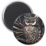 Witch in Owl Form 2 Inch Round Magnet