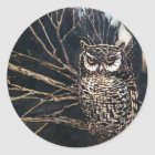 Witch in Owl Form Classic Round Sticker