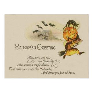 Witch Jack O' Lantern Black Cat Bat Postcard