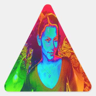 Witchcraft Triangle Sticker