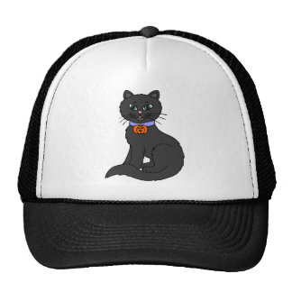 Witches Black Cat Hats