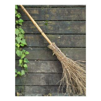 Witches broomstick flyer