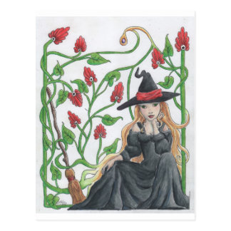 Witch's Broom Postcard