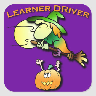 Witchy the Learner Driver Sticker