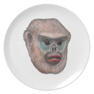 WITH A GLANCE MELAMINE PLATE