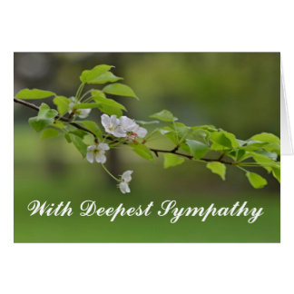 With Deepest Sympathy White Flowers On Tree Branch Card