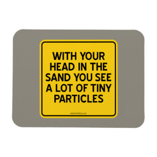 WITH HEAD IN SAND YOU SEE A LOT OF TINY PARTICLES MAGNET