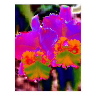 With other eyes watched flowers 1 post card
