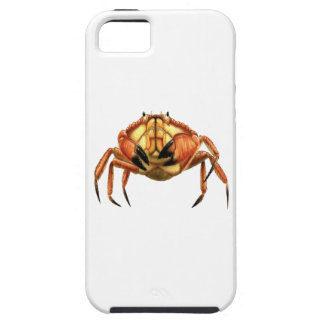 WITH STRONG CLAWS iPhone SE/5/5s CASE