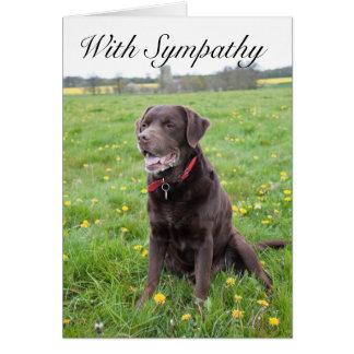 With Sympathy Pet Dog card