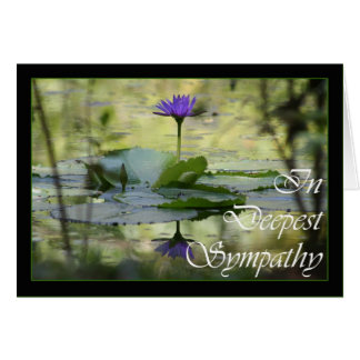 With Sympathy, Simply stated condolences Card