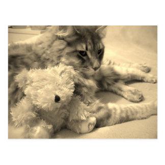 with teddy 2 postcard