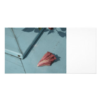 withered hibiscus flower on teal boards picture card
