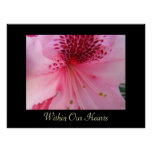 Within Our Hearts art prints Pink Rhododendron Print