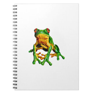 WITHIN THE RAINFOREST NOTEBOOK