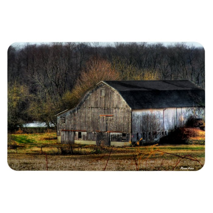 Withstanding the Test of Time Rectangular Photo Magnet