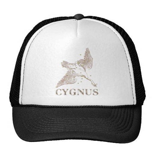 WITS: Cygnus Trucker Hat