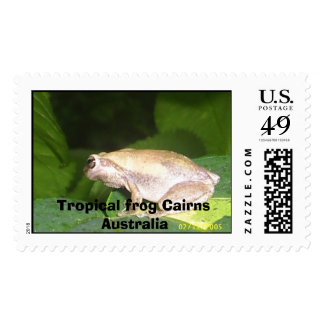 wittle froggy, Tropical frog Cairns Australia Stamp