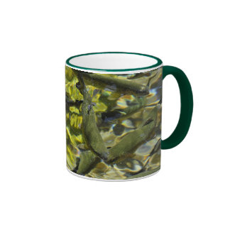 Wizard Falls Fish Hatchery Mug