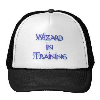 Wizard in Training blue Trucker Hat