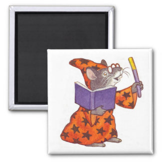 Wizard Mouse Magnet