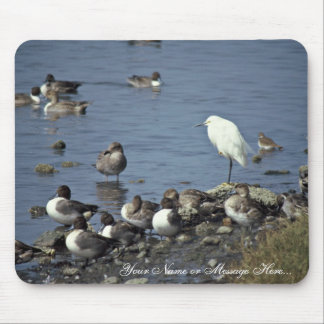 WO, Pintails and Snowy Egrets Mouse Pads