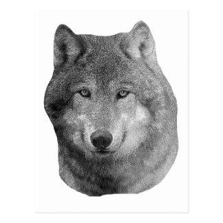 Wolf2 - Stylized Image Postcard