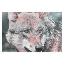 wolf 1115 tissue paper