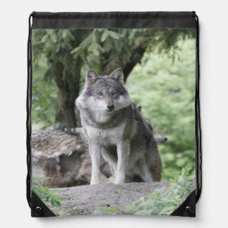 Wolf 14AJ Drawstring Bag