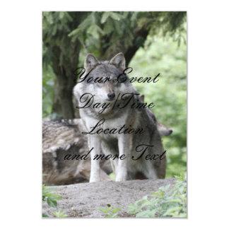 Wolf 14AJ Custom Invitations