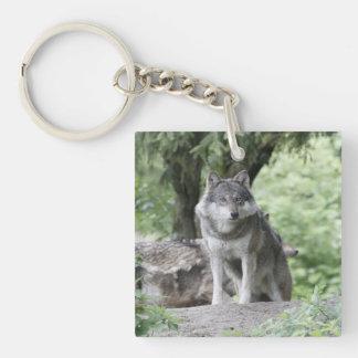 Wolf 14AJ Square Acrylic Key Chain