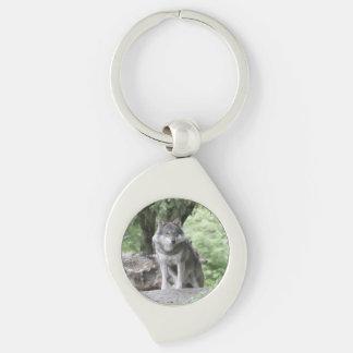 Wolf 14AJ Keychains