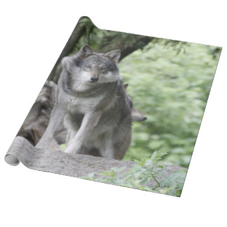 Wolf 14AJ Wrapping Paper
