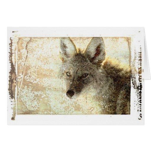 Wolf 1 greeting card