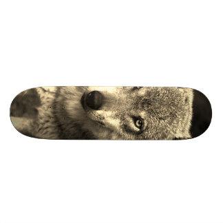 Wolf 215 custom skate board