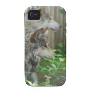 wolf-27 Case-Mate iPhone 4 case