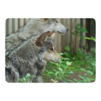 wolf-27.jpg invitación 12,7 x 17,8 cm