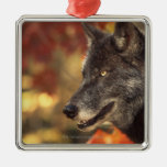 Wolf 2 christmas ornaments
