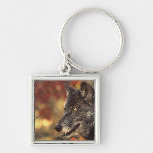Wolf 2 keychains