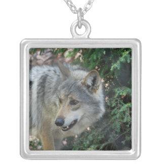 wolf-42 jewelry