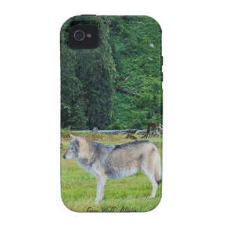Wolf & Alaskan Forest Wildlife Art iPhone 4 Case