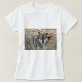 wolf animal face eyes canine forest zoo park T-Shirt