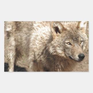 Wolf Animals Peace Love Nature Park Wolves Destiny Rectangular Sticker