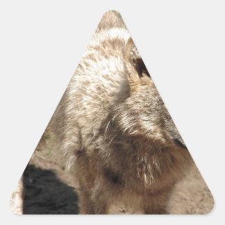 Wolf Animals Peace Love Nature Park Wolves Destiny Triangle Sticker