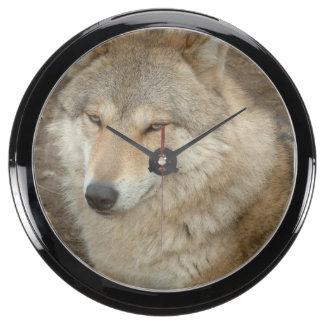 Wolf Aquarium Clocks
