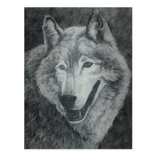 Wolf Art Postcard