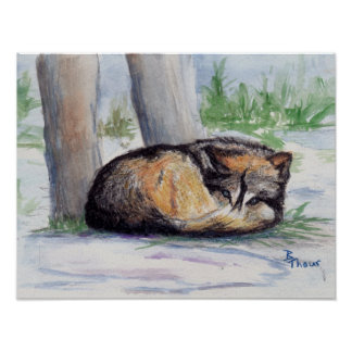 Wolf At Rest Print