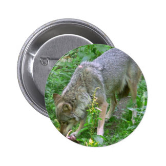 Wolf Pinback Buttons